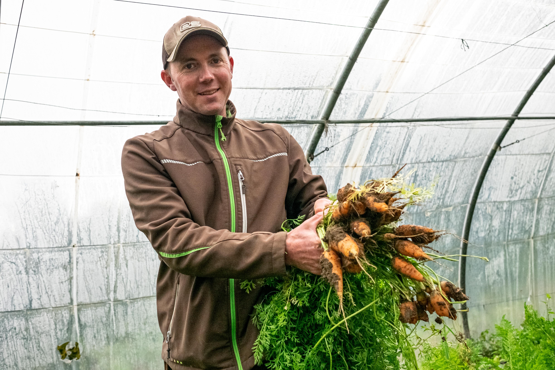 Jardinier dans une serre présentant des carottes fraichement sorties de terre